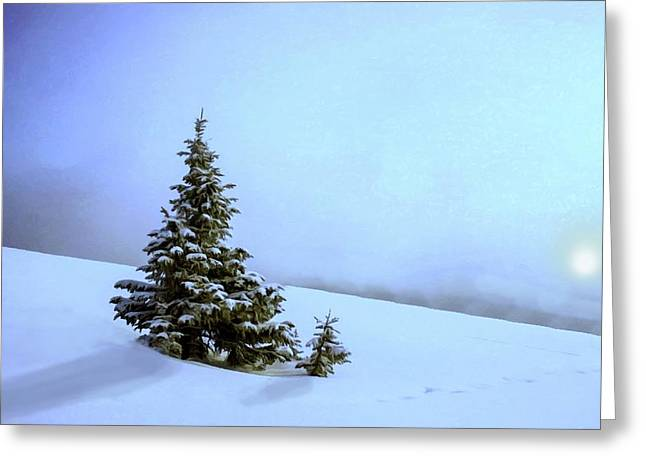 Greeting Card featuring the painting Evergreen Offspring P D P by David Dehner