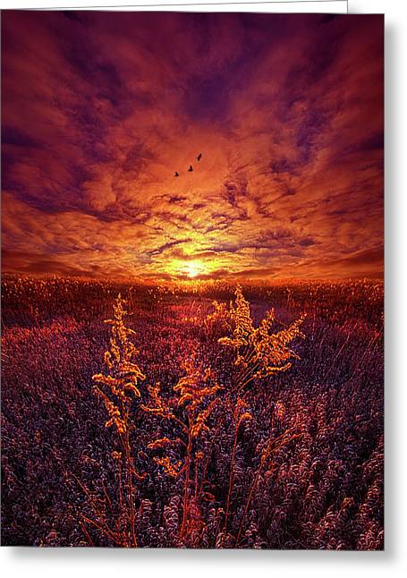 Greeting Card featuring the photograph Every Sound Returns To Silence by Phil Koch