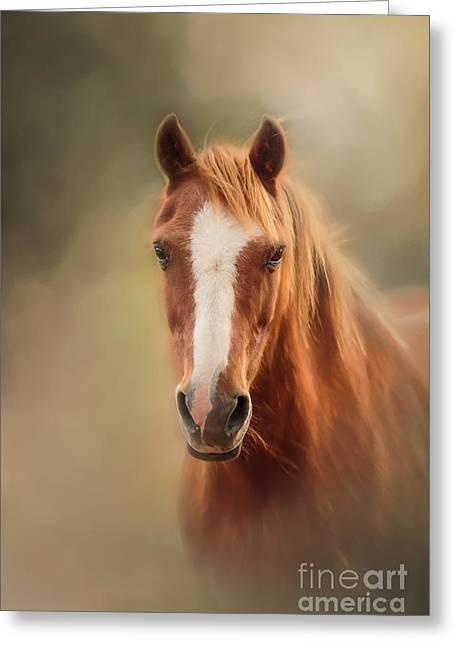 Everyone's Favourite Pony Greeting Card