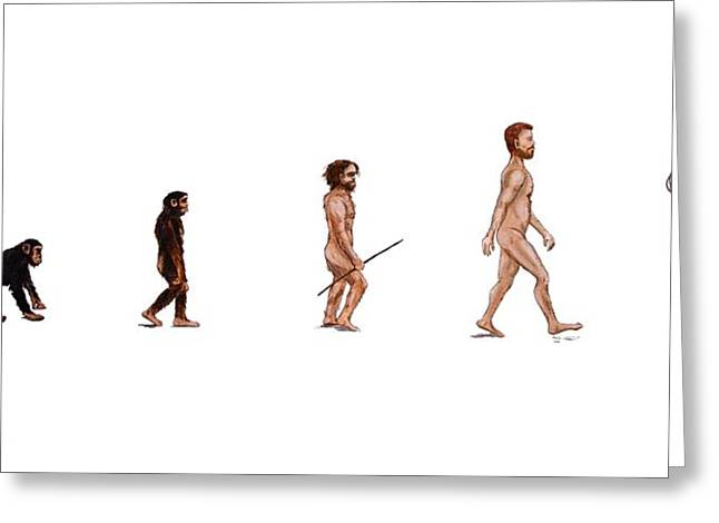 Evolution Of Rob Greeting Card by Jennifer Lynch