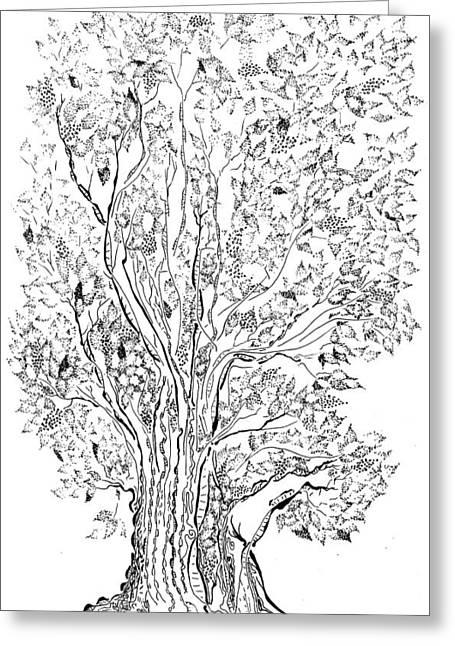Evolutionary Tree Greeting Card by Regina Valluzzi