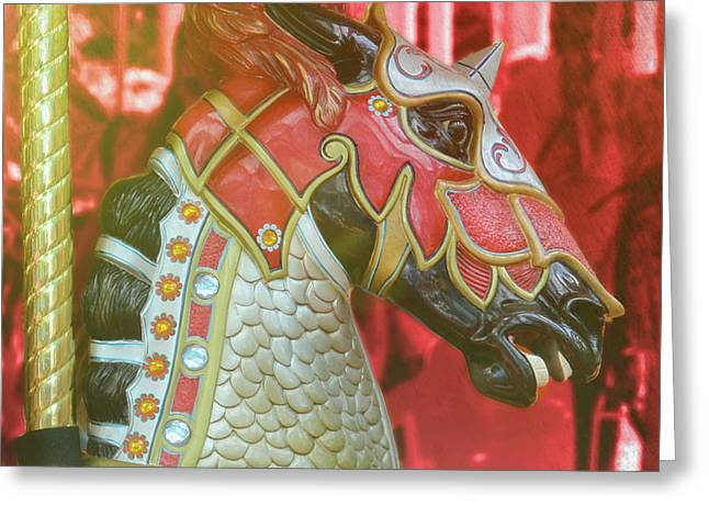 Excalibur Greeting Card by JAMART Photography