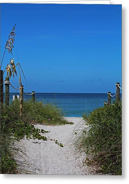 Greeting Card featuring the photograph Exclusively Captiva by Michiale Schneider