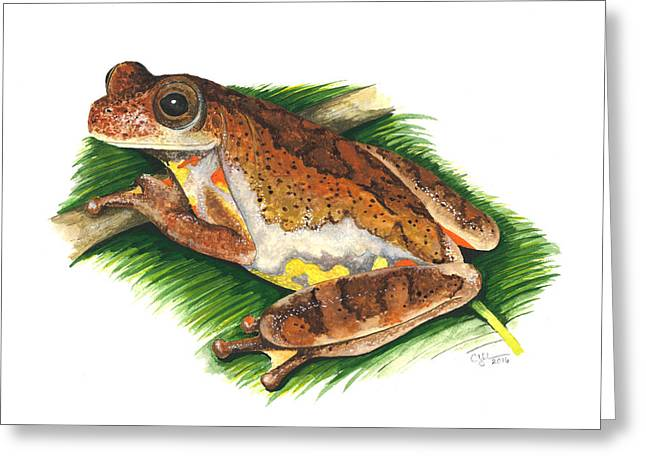 Executioner Treefrog Greeting Card