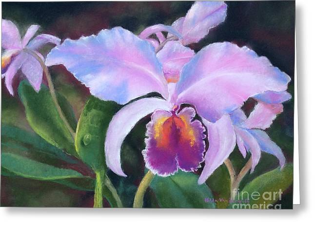 Exotic Pink Orchid Greeting Card