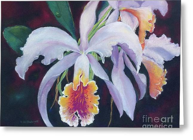 Exotic White Orchid Greeting Card