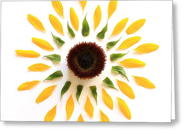 Explosion Greeting Card by Jeff Bord