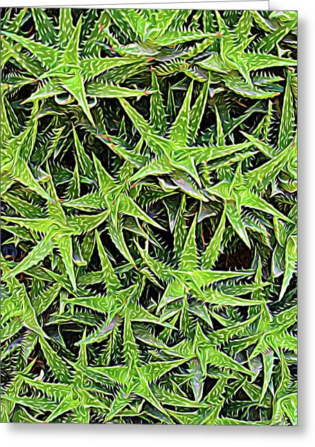 Greeting Card featuring the photograph Expressionalism Aloevera by Aimee L Maher Photography and Art Visit ALMGallerydotcom