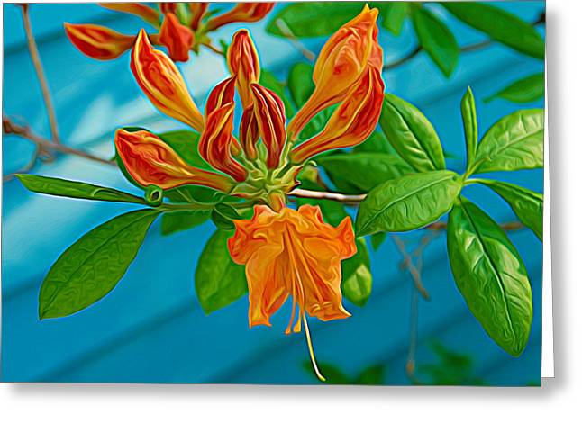Greeting Card featuring the photograph Expressionalism Budding Azalea by Aimee L Maher Photography and Art Visit ALMGallerydotcom