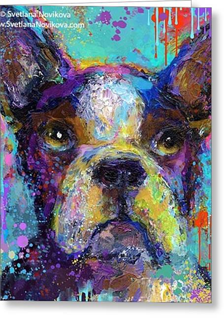 Expressive Boston Terrier Painting By Greeting Card