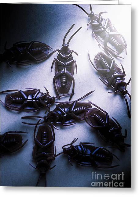 Extermination Greeting Card by Jorgo Photography - Wall Art Gallery