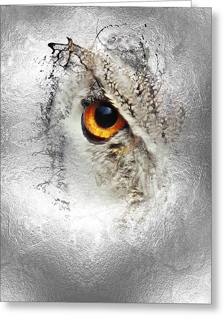 Greeting Card featuring the photograph Eye Of The Owl 1 by Fran Riley