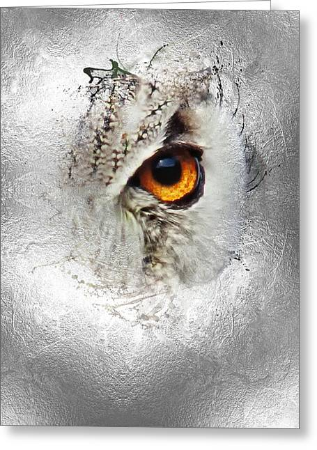 Greeting Card featuring the photograph Eye Of The Owl 2 by Fran Riley