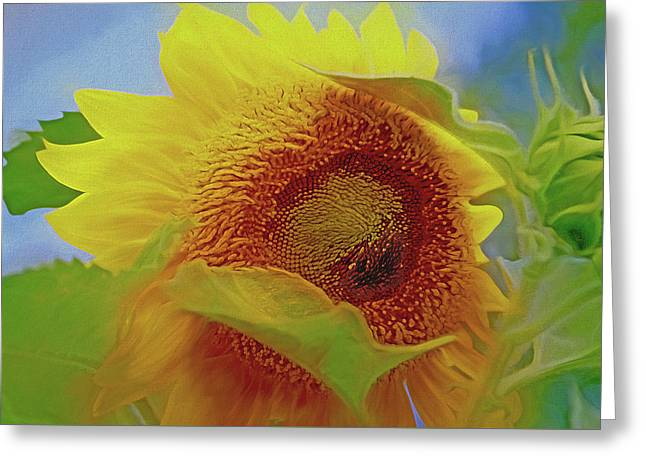 Greeting Card featuring the mixed media Eye Of The Sunflower by Lynda Lehmann