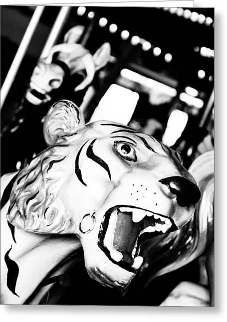 Eye Of The Tiger Greeting Card by Colleen Kammerer