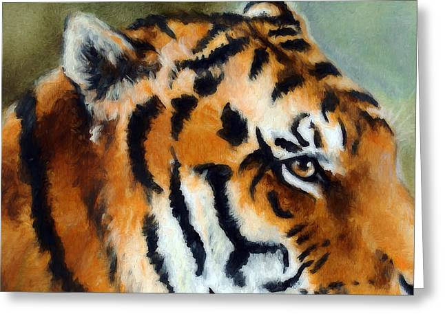 Eye Of The Tiger Greeting Card by Ronald Bolokofsky