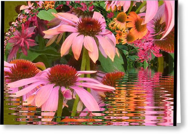 Eyecatching Cone Flowers Greeting Card by Nancy Pauling