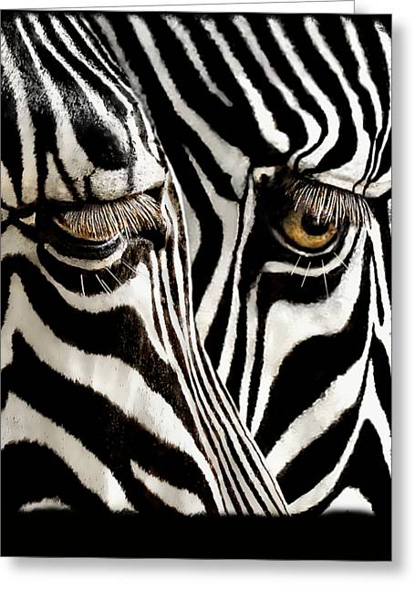 Eyes And Stripes Forever Greeting Card