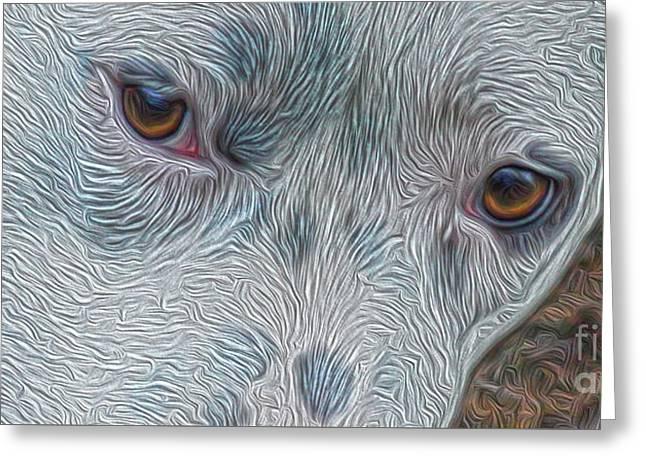 Eyes Of Concern Greeting Card by Kim Pate