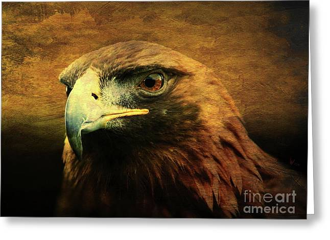 Eyes Of The Golden Hawk Greeting Card by Wingsdomain Art and Photography