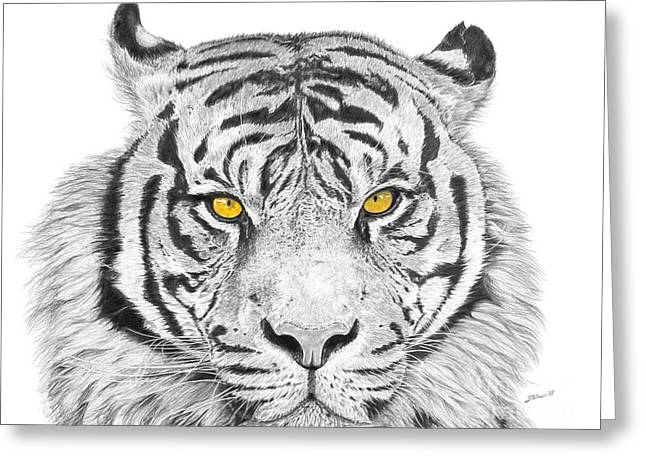 Eyes Of The Tiger Greeting Card by Shawn Stallings