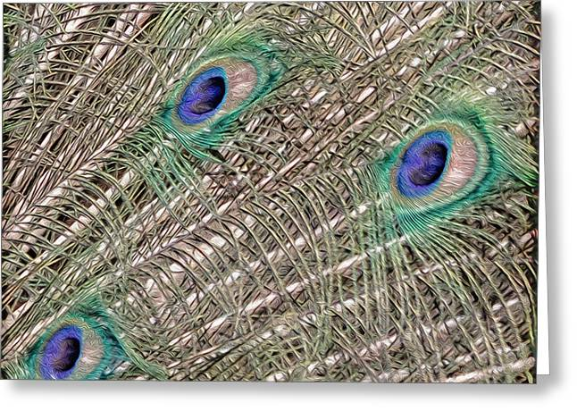Eyes On A Branch Greeting Card by Tish Hopkins