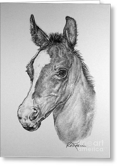 Face Of A Foal Greeting Card by Roy Anthony Kaelin