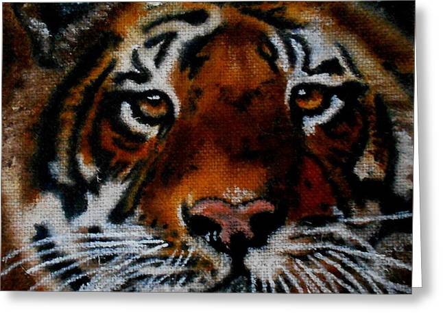Face Of A Tiger Greeting Card