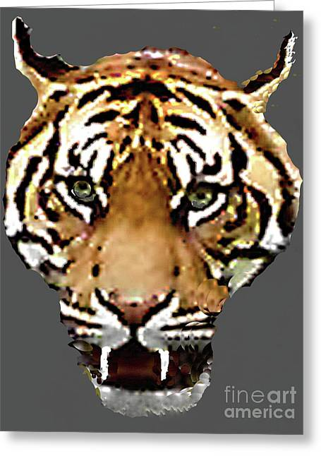 Greeting Card featuring the photograph Face-to-face With A Bengal Tiger  by Merton Allen