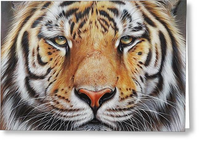 Faces Of The Wild - Amur Tiger Greeting Card by Elena Kolotusha