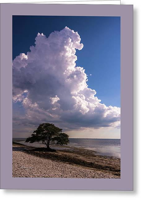 Facing The Storm Greeting Card