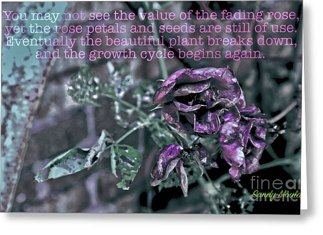 Fading Rose Greeting Card by Sandy Moulder