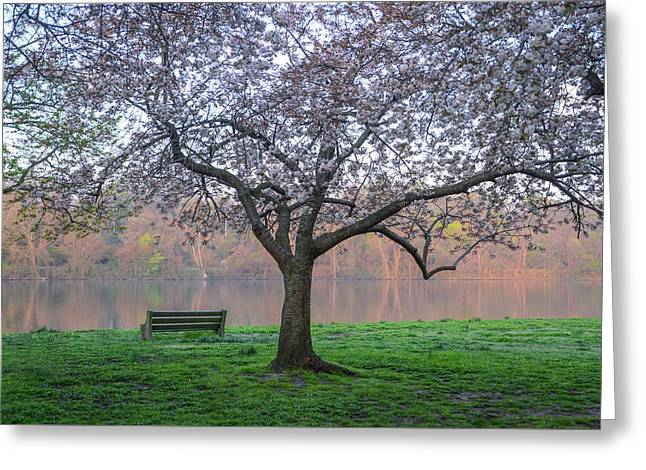 Fairmount Park In The Spring Greeting Card by Bill Cannon