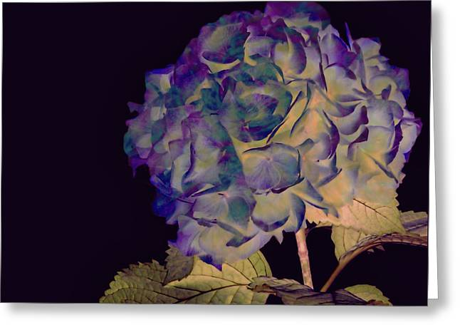 Fairy Hydrangea Greeting Card by Susan Maxwell Schmidt