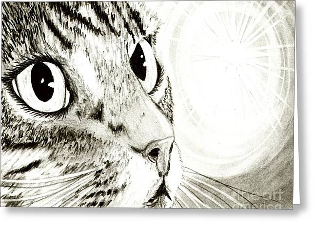 Fairy Light Tabby Cat Drawing Greeting Card by Carrie Hawks