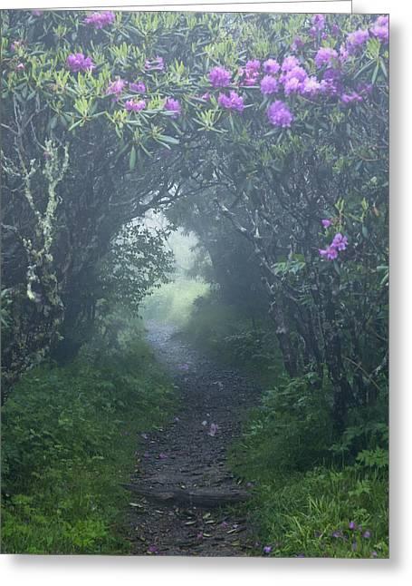 Fairy Path Greeting Card