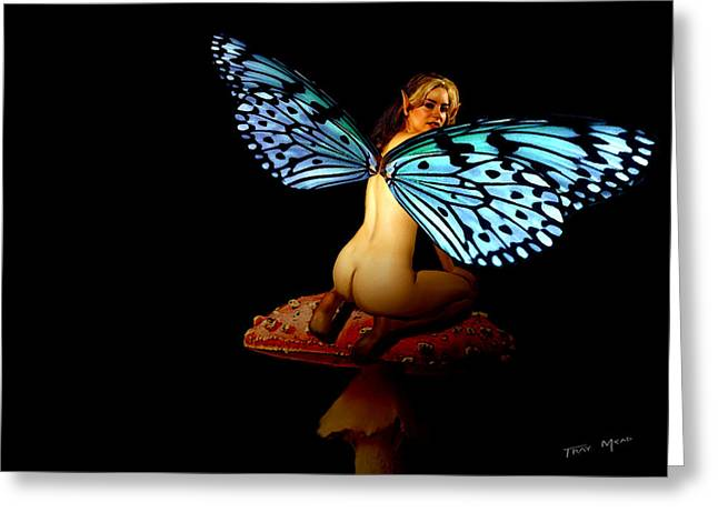 Fairy Takes A Second Look Greeting Card by Tray Mead