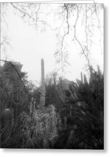 Fairytale Saguaro Greeting Card by Kevin Igo