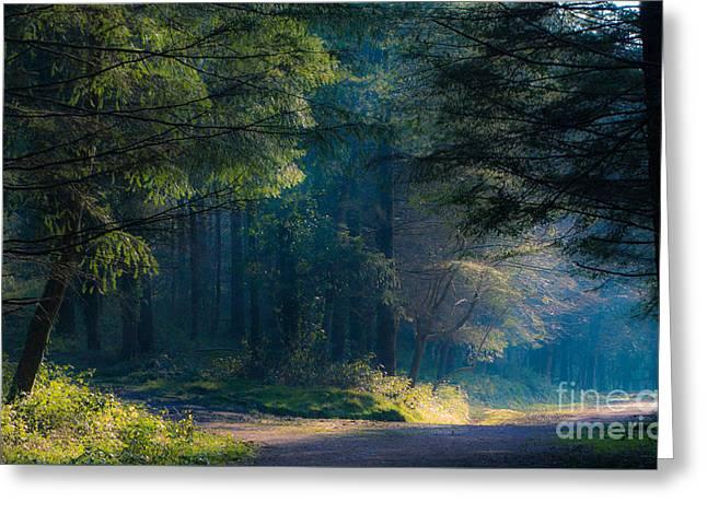 Fairytale Woods Greeting Card