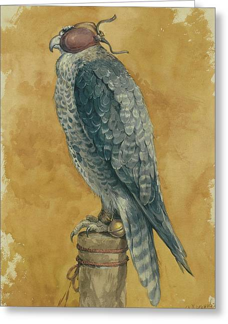 Falcon Greeting Card by Alexander Sergeevich Khrenov