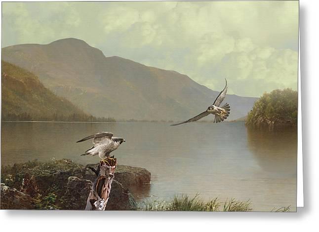 Falcons At Flagstaff Lake Greeting Card