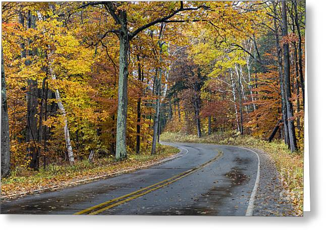 Fall Along Bohemian Road Greeting Card by Twenty Two North Photography