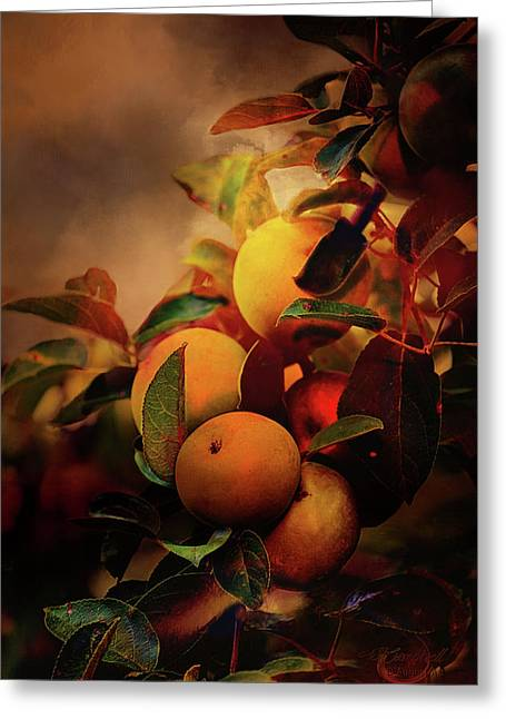 Fall Apples A Living Still Life Greeting Card