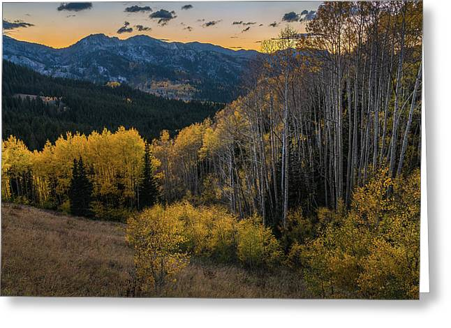 Fall Aspens At Dusk In The Wasatch Greeting Card by James Udall