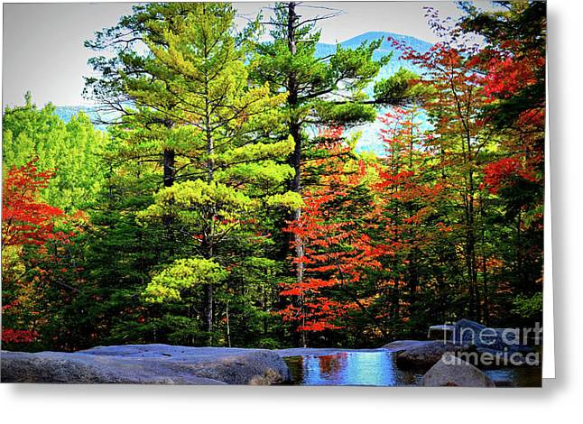 Fall At Diana's Baths Greeting Card by Patti Whitten