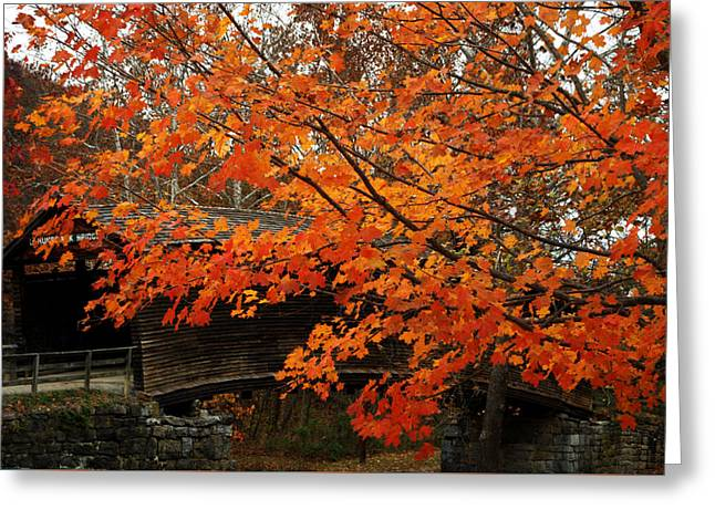 Fall At Humpback Bridge Greeting Card