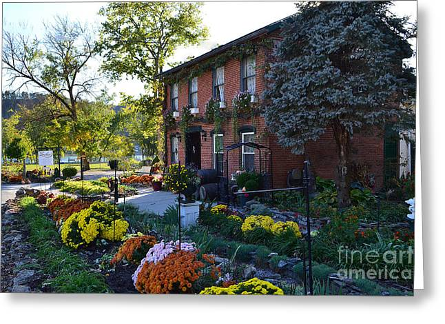 Fall At Lanier Winery In Madison  Greeting Card