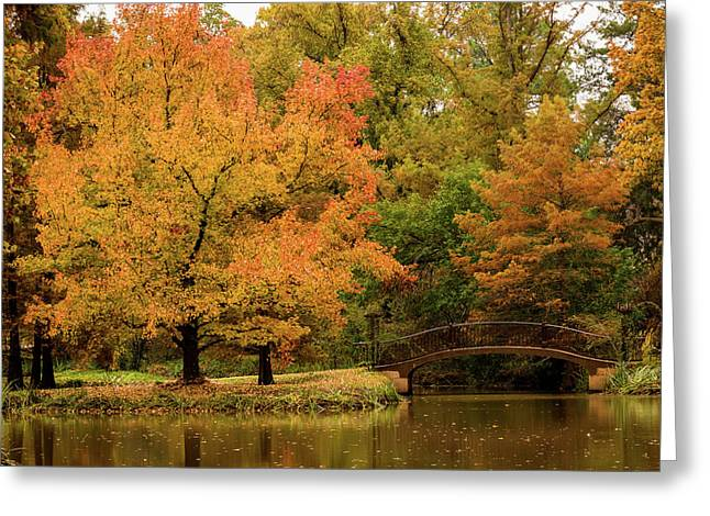 Fall At The Arboretum Greeting Card