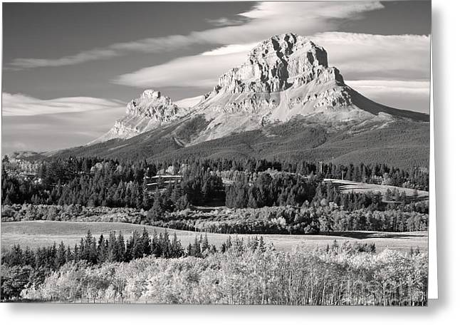 Fall At The Crowsnest In Monochrome Greeting Card