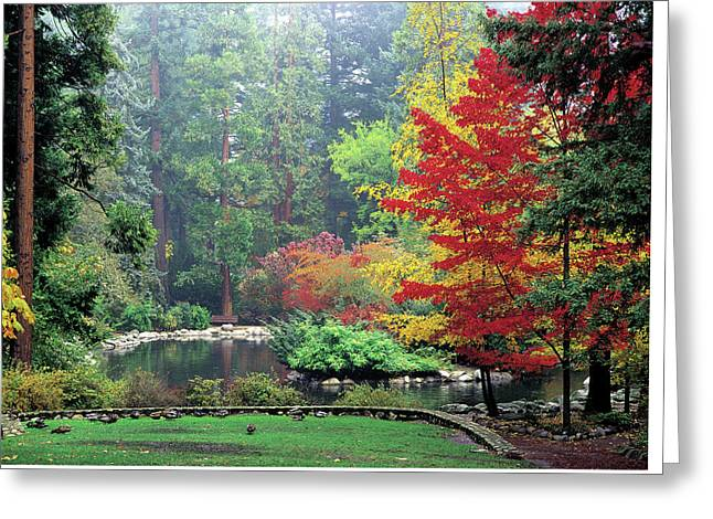 Fall At The Upper Duck Pond Greeting Card